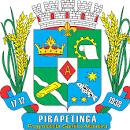 Logo da entidade Prefeitura Municipal de Pirapetinga